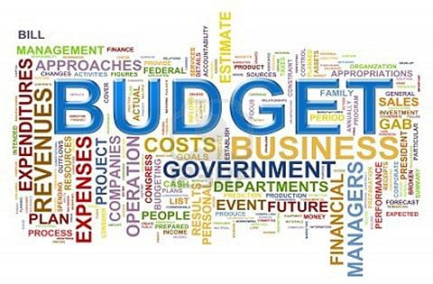Indian budget 2015-16