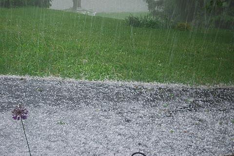 Hailstorm destroys crops