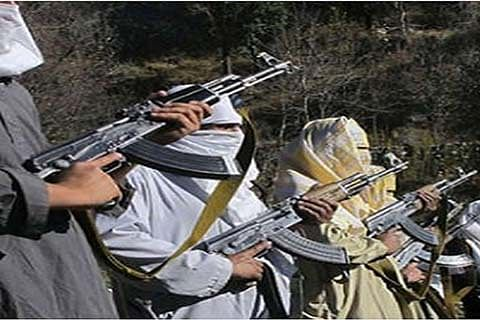 79 youths joined militant ranks this year: GoI