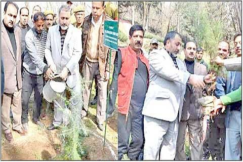 PLANTATION DRIVE LAUNCHED IN CITY