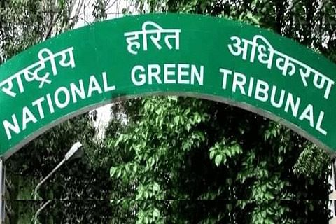 NGT refuses to modify order on deregistration of 10-year-old diesel vehicles in Delhi-NCR