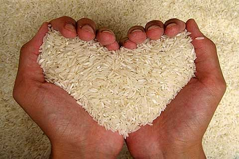 JK among highest rice consuming states: NSSO