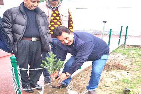 Plantation drive held at Harwan