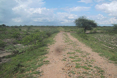 Govt orders probe into title change of 700 kanal land in Kulgam