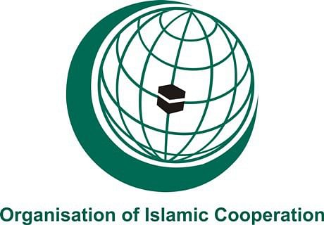 At Istanbul, OIC reaffirms support to Kashmiris' right to self-determination