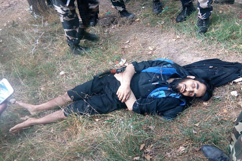Militant killed in ongoing Pampore gunfight: Police