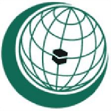 Turkey backs Pak on OIC mission