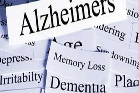 Traditional Indian diet dramatically cuts Alzheimer's risk