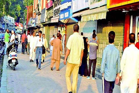 EID BUZZ MISSING FROM CITY-CENTRE