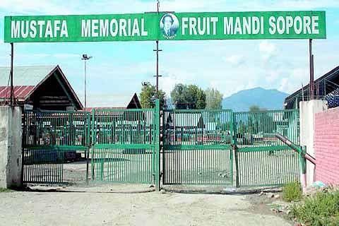 Kashmir fruit industry suffers Rs 1,000 cr loss