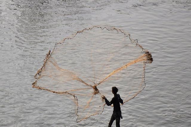 Fishermen Cast Net In Jhelum