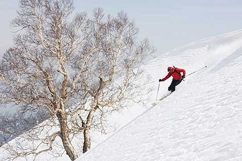 THIS WINTER, AT GULMARG
