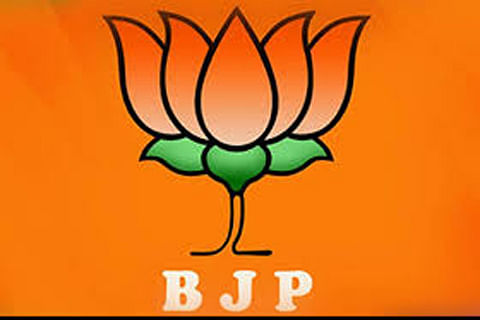 BJP blames ISI for killings in Kashmir