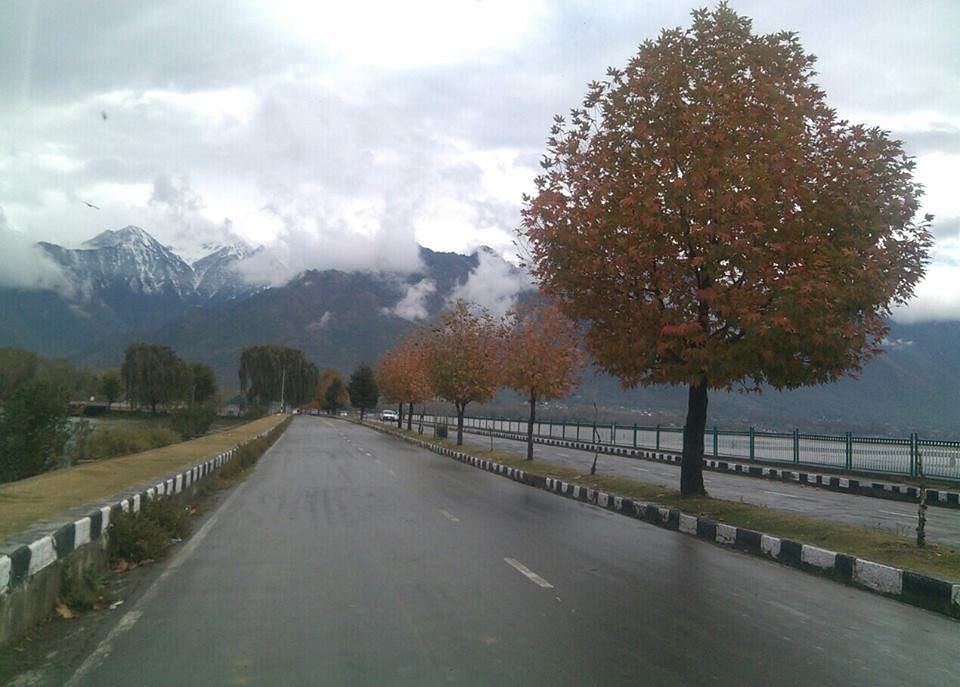 Kashmir – My Symphony