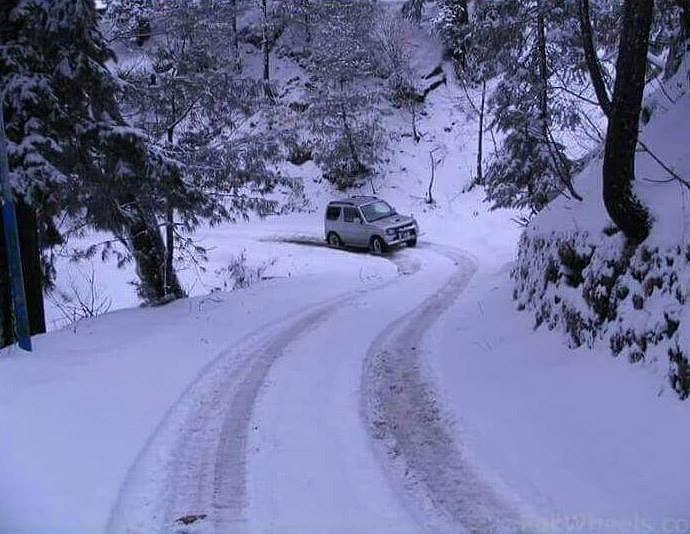 Weatherman predicts snow, sounds 'alert'