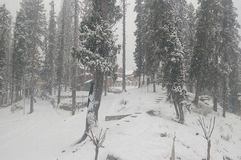 Sonamarg draped white; Kargil highway closed