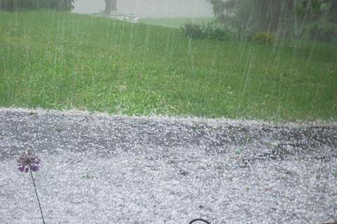 Hailstorm damages orchards in Handwara
