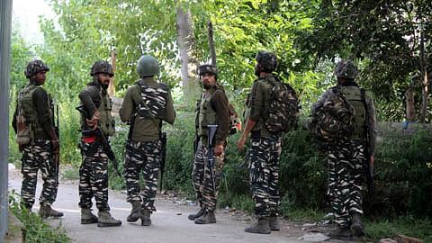 Day 3: Searches continue in Bandipora forests