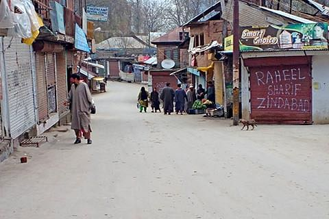 Tral grenade attack mastermind identified: Police