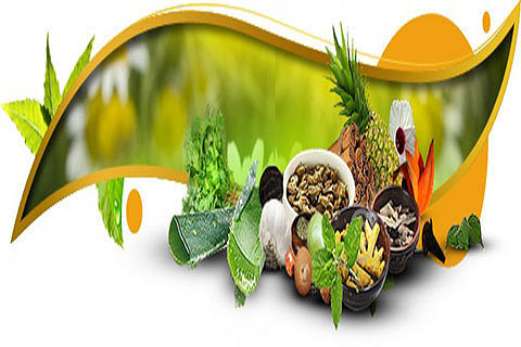 Minister discusses preparations for commissioning of Ayurvedic Medical College