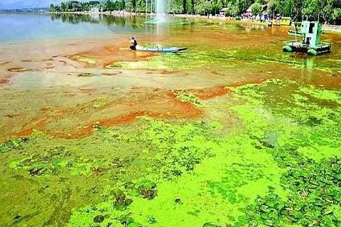 Saving lakes in Kashmir