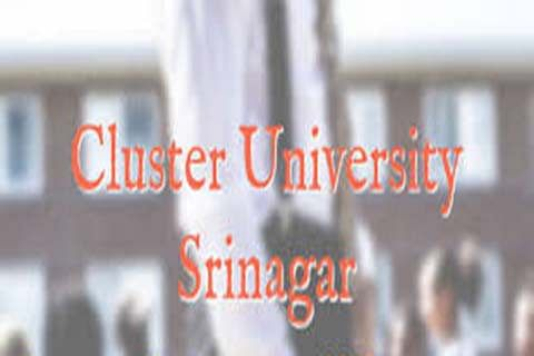 CLUSTER UNIVERSITY: An Institution in the Making