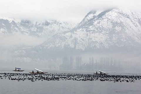 SDRF conducts rescue exercise in Dal Lake