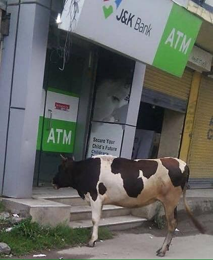 Rajouri ATMs leave people high and dry