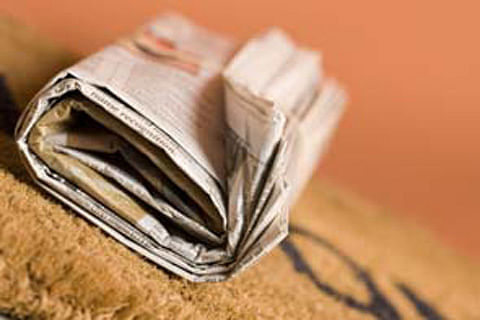 Young Britons reading newspapers in print more
