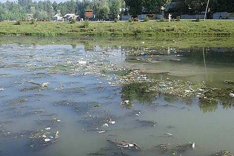12 water bodies in Srinagar have 'almost' dried up: Report
