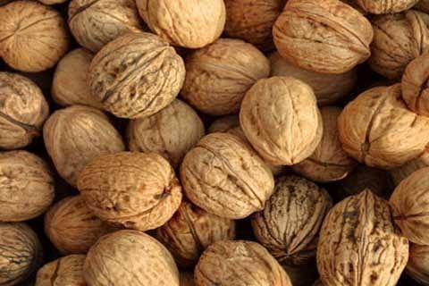 Kashmir's walnut trade register drastic dip in prices