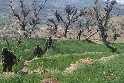 Sniffer dogs deployed to track militants in Kishtwar