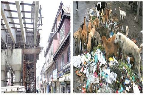 O! Srinagar! What did we do to you?