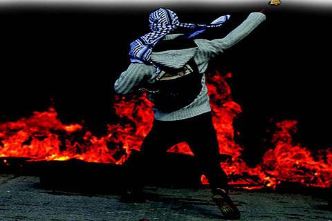 The Resilient Kashmiris!