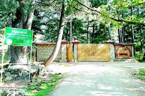 Shikargah tourist resort in Tral neglected, underdeveloped: locals