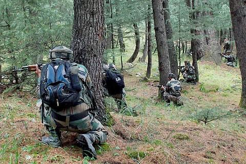 Gunfight breaks out in Tral woods