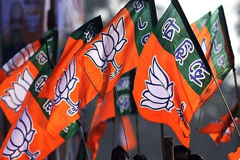 BJP to press for revocation of Article 35A