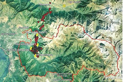 Satellite collaring traces endangered Hangul from Dachigam to Tulail