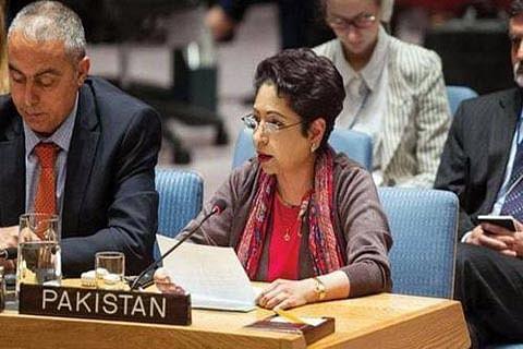 Pakistan links Kashmir with Palestine at UN forum