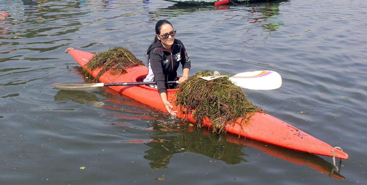 Foreign Tourists Take Part in De-weeding Campaign in Dal Lake