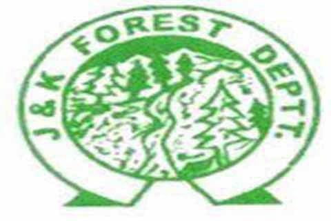Forest deptt issues appointment orders to forest guards