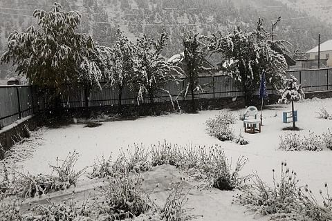 Bandipora-Gurez road closed after fresh snowfall