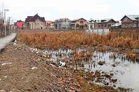 CONCERN: Kashmir wetlands shrinking at alarming pace