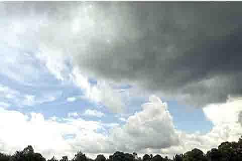 Fruit growers cheer improvement in weather