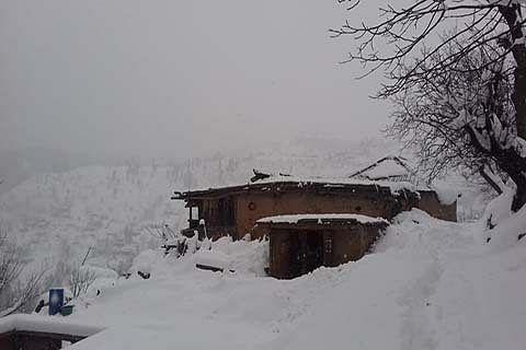 Fresh snowfall in Chenab Valley