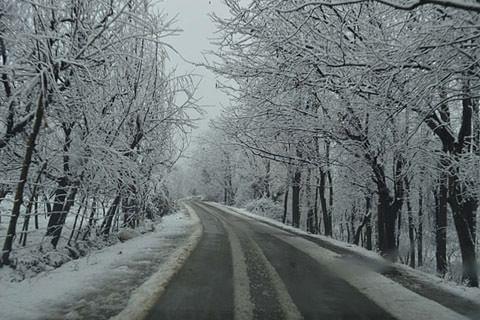 Srinagar shivers at minus 2.1 degree Celsius; Met forecasts snowfall in Kashmir