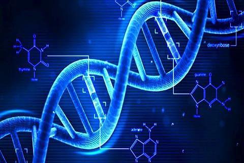 Srinagar forensic lab to get first DNA testing facility