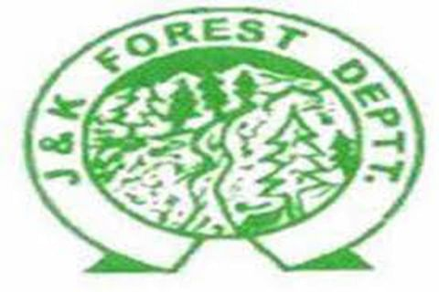 Forest department goes hi-tech, adopts e-tendering of works