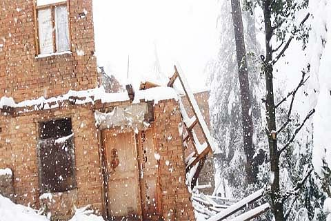 Inclement weather: Heavy snowfall damages poultry farm