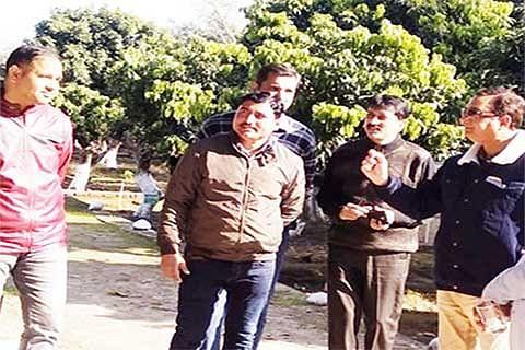 Dir Hort inspects govt grape farm, fruit plant nursery at Muralian